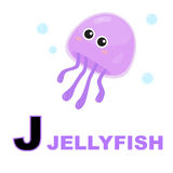 Jellyfish. Learn to read the letter j for jellyfish Stock Photo