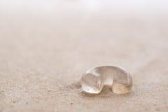 Jellyfish na plaży Zdjęcia Stock