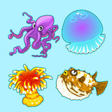 Jellyfish, octopus, fish hedgehog and yellow coral. Jellyfish, octopus, fish hedgehog, coral on blue background. Vector series of exotic fish characters stock illustration