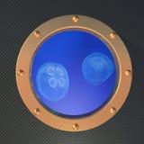 Jellyfish on the porthole Stock Photography