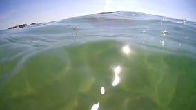 Jellyfish (Rhizostoma pulmo) swims under the base of the Black Sea (Ukraine) stock footage