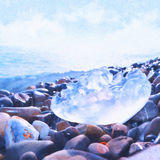 Jellyfish in the sea. Sea picture paints on canvasJellyfish on the stones in the Black Sea Stock Photo