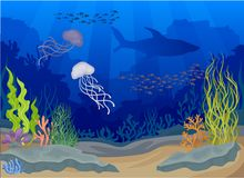 Jellyfish under water. Seascapes concept. Vector illustration. Jellyfish under water. Seascapes concept. Ocean and underwater world. Underwater cave and ocean vector illustration