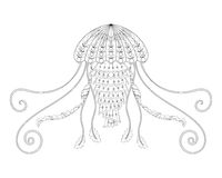 Jellyfish vector illustration. Hand drawn sea animal for adult anti stress coloring book, page in zentangle style. Stock Image