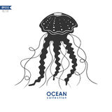 Jellyfish vector illustration Royalty Free Stock Photos