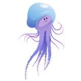 Jellyfish Stock Image