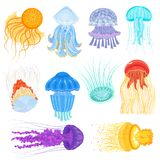 Jellyfish vector ocean jelly-fish and underwater nettle-fish illustration set of jellylike glowing medusa in sea. Isolated on white background stock illustration