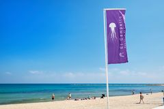 Jellyfish warning flag on the beach. El Campello, Spain - May 22, 2018: Jellyfish warning flag on the beach of El Campello. El Campello is a coastal resort town Stock Image