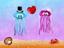 Jellyfishes in love Stock Photo