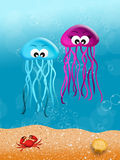 Jellyfishes in love Royalty Free Stock Image