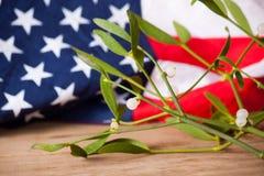 Jemioła i flaga amerykańska Święta dekorują odznaczenie domowych świeżych pomysłów Obraz Stock
