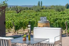 Jenga and Wine on a vineyard stock image