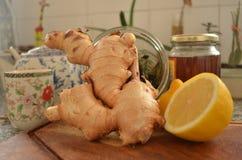 Jengibre con los ingredientes del té del invierno Imágenes de archivo libres de regalías