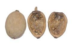 Jenipapo frukt på vit arkivfoto