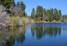 Free JENKS LAKE WITH REFLECTIONS OF THE TREES Stock Photos - 40744133
