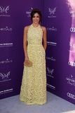 Jenna Dewan à la bille 2012 de guindineau de chrysalide, emplacement privé, Los Angeles, CA 06-09-12 Photos stock