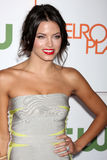 Jenna Dewan Royalty Free Stock Photos