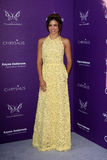 Jenna Dewan arriving at 11th Annual Chrysalis Butterfly Ball Stock Image
