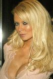 Jenna Jameson Royalty Free Stock Image