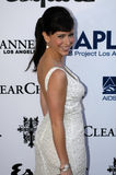 Jennifer Love Hewitt on the red carpet. Jennifer Love Hewitt appearing on the red carpet Royalty Free Stock Photography
