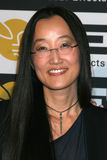 Jennifer Yu Nelson arrives at the 10th Annual Visual Effects Society Awards Royalty Free Stock Images
