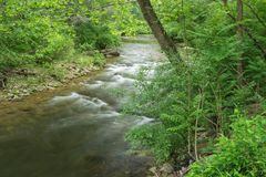Jennings Creek a Popular Trout Stream - 5. Jennings Creek a popular mountain trout stream located in Botetourt County, Virginia, USA stock photos