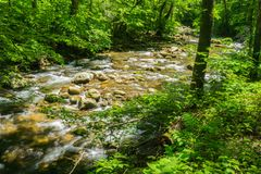 Jennings Creek a Popular Trout Stream - 2. Jennings Creek a popular mountain trout stream located in Botetourt County, Virginia, USA stock image