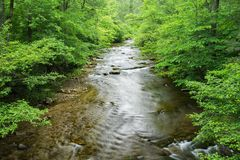 Jennings Creek a Popular Trout Stream. Jennings Creek a popular mountain trout stream located in Botetourt County, Virginia, USA stock photo