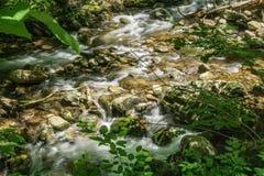 Jennings Creek um córrego popular da truta - 3 Foto de Stock Royalty Free
