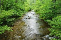Jennings Creek una corrente popolare della trota fotografia stock