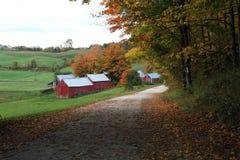 Jenny Farm Stock Image