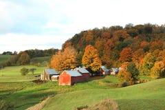 Jenny Farm Imágenes de archivo libres de regalías