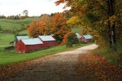 Jenny Farm Foto de archivo