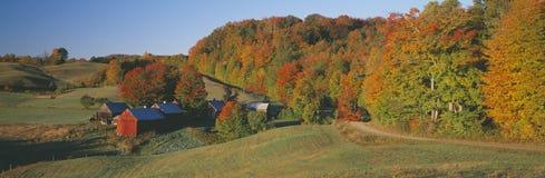 Jenny Farm söder av Woodstock, Vermont Arkivbilder