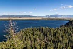 Jenny jezioro przy Uroczystym Teton parkiem narodowym, Wyoming, usa Zdjęcie Stock