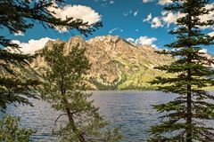 Jenny jezioro, Uroczysty Tetons park narodowy zdjęcia stock