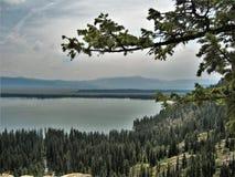 Jenny Lake stockfotografie
