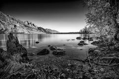 Jenny Lake Stock Foto