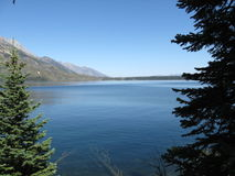 Jenny lake stock photography