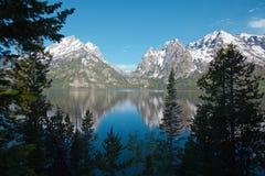 Jenny Lake mit Reflexionen stockfotografie