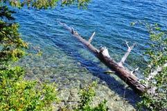 Jenny Lake Royalty Free Stock Images