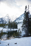 Jenny Lake. The scenery of Jenny Lake is partly covered with snow with pine forest and snowy mountains Royalty Free Stock Image