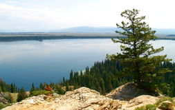 Jenny Lake. A view of Jenny Lake in Grand Tetons National Park from Inspiration Point Stock Photo