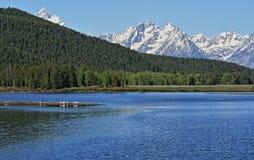 Jenny Lake vor Berg Moran des großartigen Tetons in Wyoming USA lizenzfreies stockfoto