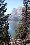 Jenny Lake, Wyoming. Jenny Lake at Jackson Hole, Wyoming stock photos