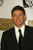Jensen Ackles Стоковое Изображение RF