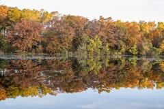 Jensen Lake Apple-valleimn royalty-vrije stock afbeeldingen