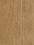 Jequetiba wood veneer texture Royalty Free Stock Photos