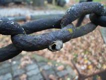 Jerarquía abandonada de la abeja en una cadena oxidada Imagenes de archivo