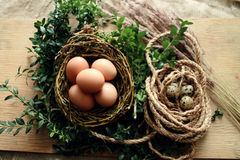 Jerarquía con los huevos Imagen de archivo libre de regalías